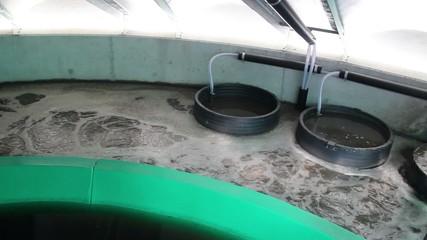 Round aeration tank at small local sewage treatment plant.
