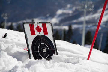target for biathlon on the snow