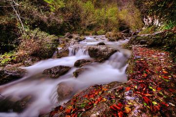 Cascate e autunno