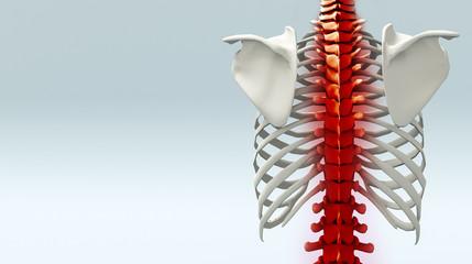 Struttura scheletrica con dolore