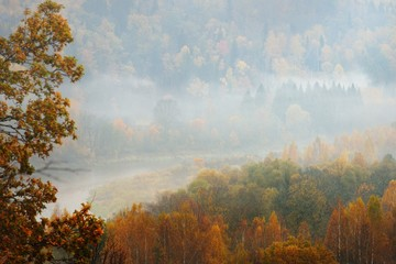 Gauja river valley in Autumn, Latvia.