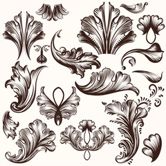 Set of vector hand drawn swirls in vintage style