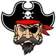 Pirate Mascot - 74970995
