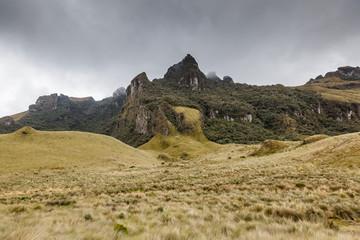 Picos de roca cubiertos de selva