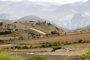 Campos cultivados en la sierra de Ecuador
