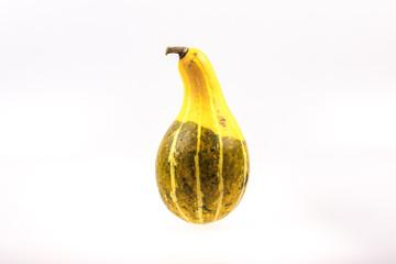 Unusual gourd on white