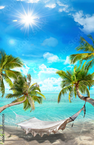 tropical landscape - 74983154