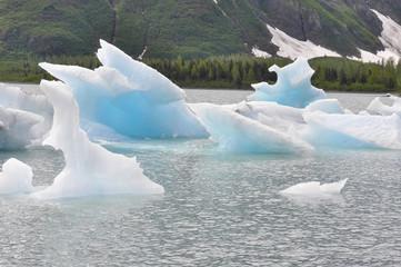 Portage lake with iceberg, Alaska