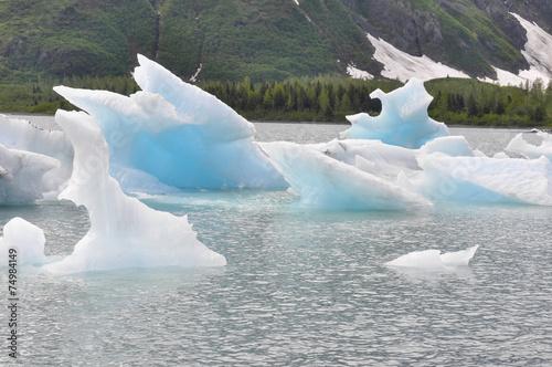 Portage lake with iceberg, Alaska - 74984149