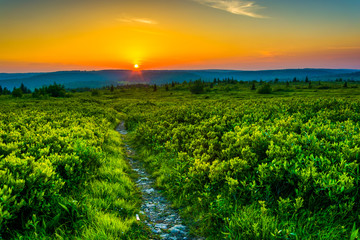 Sunset at Dolly Sods Wilderness, Monongahela National Forest, We