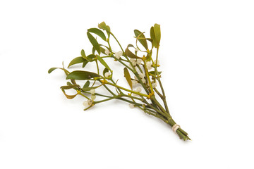 Bunch of mistletoe isolated on a white studio background.