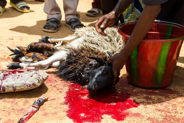 Opfergabe in Guinea