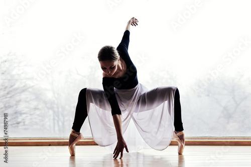 Zdjęcia na płótnie, fototapety, obrazy : Ballet Dancer