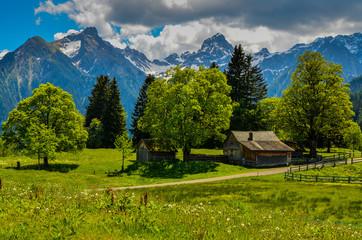 Sommerliche Bergwelt