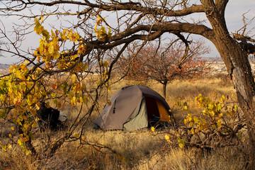autumn landscape tourist tent under yellowed tree