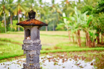 Little shrine on a rice paddy near Ubud in Bali