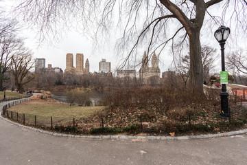 Central Park Rascacielos
