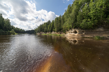 mountain river in summer surrounded by forest