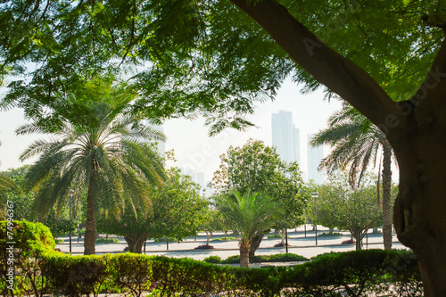 Spoed canvasdoek 2cm dik Egypte beautiful green park in the city of Dubai, United Arab Emirates