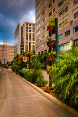 Buildings and landscaping along a street in Orlando, Florida.
