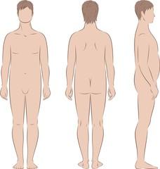 Vector illustration of male figure