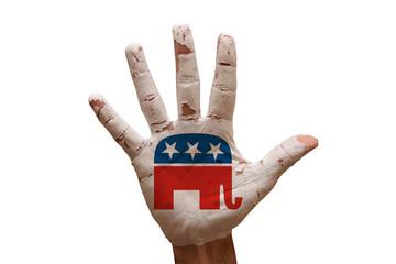 palm republicans