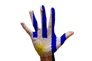 palm flag uruguay