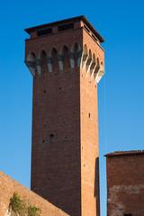 Cittadella, Torre guelfa, Pisa