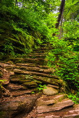 Rock staircase on a trail at Rickett's Glen State Park, Pennsylv