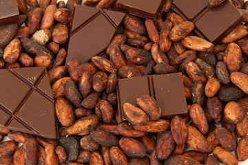 fine origin chocolate with cocoa beans