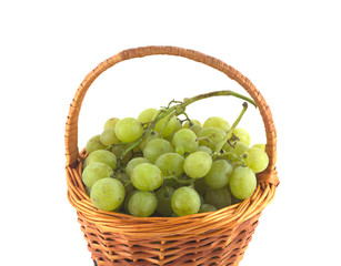 Ripe grape bunches in wicker basket isolated close up