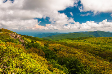 Spring color in the Blue Ridge Mountains, seen from Stony Man Mo