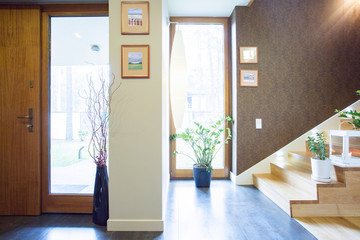 Designed anteroom in single-family home