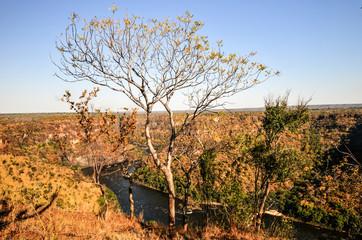 Zambezi River Gorge