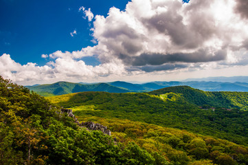 View of the Blue Ridge from  Stony Man  Mountain in Shenandoah N