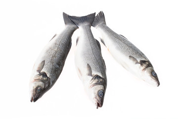 Three fresh fish on a light background. With space for text