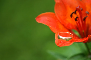 wedding ring on flower