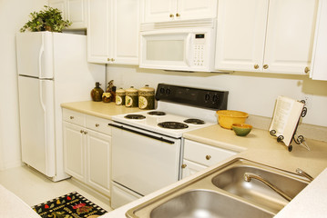 Upscale Apartment Kitchen Revised