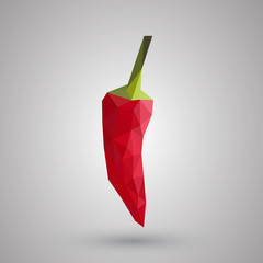 Hot chilli pepper vector set isolated on white background.