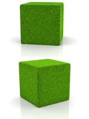 grass cube