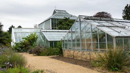 Old greenhouse in botanical garden Cambridge UK