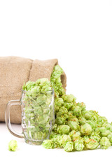 Mug and bag with hop