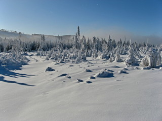 Snowy winter landscape with blue sky and fog at trees