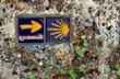 Camino de Santiago - 75036758