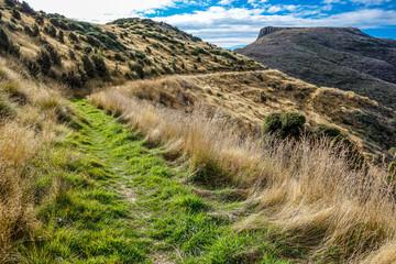 New Zealand 84