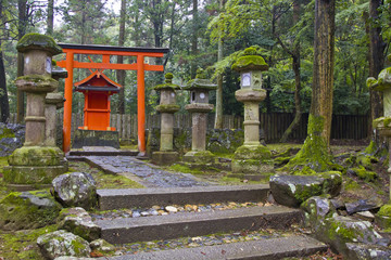 Japanese nature temple