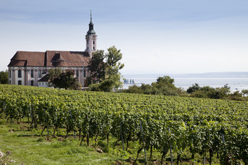 Birnau Bodensee Panorama