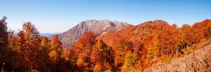 beautiful Caucasian mountains in autumn