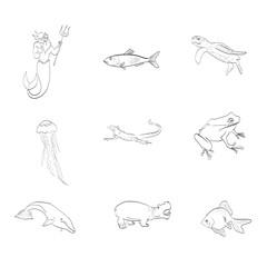 marine life, fish, iguana, frog, vector
