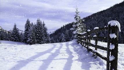 winter landscape with falling snow (loop)